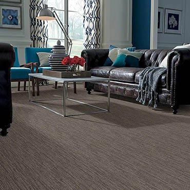Anso® Nylon Carpet | Muncy, PA